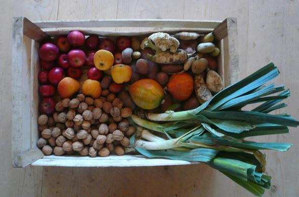 Panier de légumes agrémentés des fruits de Flaxlanden